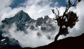 The Himalayan glaciers